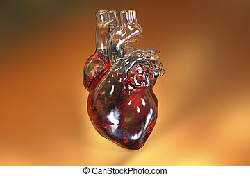 Human heart on colorful background