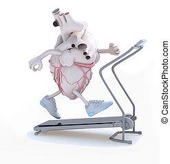 human heart organ on a running machine