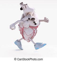 human heart organ running