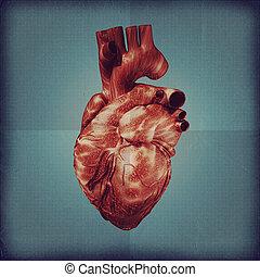 Human heart vintage blueprint. Grunge medical backgrounds