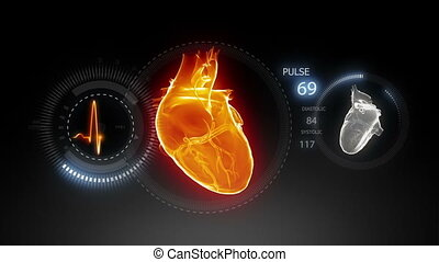 Human heart with pulse trace_2 - Human heart with pulse...