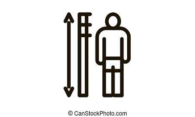 human height measurement Icon Animation. black human height measurement animated icon on white background