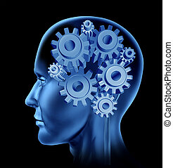 Human Intelligence And Brain Function - Human intelligence ...