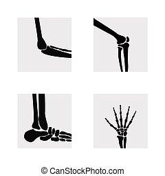 Medical orthopedic of set