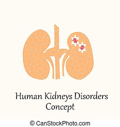 Human Kidneys Filled with Puzzle Pattern