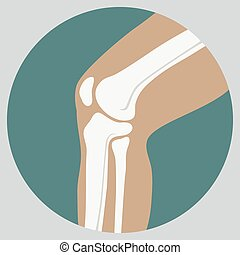 Human knee joint medical icon, emblem for orthopedic clinic