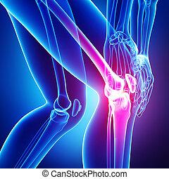 Human knee pain on blue - 3d rendered Illustration of Female...