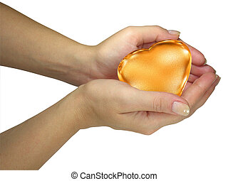 Human lady hands holding golden heart isolated over white background