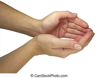 Human lady hands holding your object isolated over white...