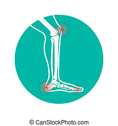 Human leg pain zones. Design elements for infographic.