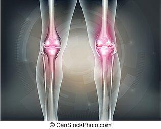 Human legs