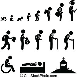 Human life cycle in pictogram style.