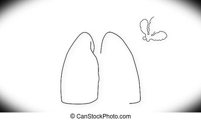 Human Lung 03 - Human Lung structure animation illustration