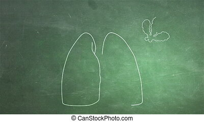 Human Lung 05 - Human Lung structure animation illustration