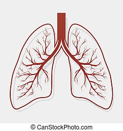 Human lung anatomy diagram human lungs with magnifying clipart human lung anatomy illustration ccuart Image collections