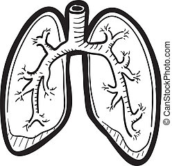 Doodle style human lung illustration in vector format.