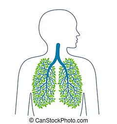 Human lungs. Healthy clean lungs. Bronchial tree. Ecology medicine and health. Healthy lifestyle. Vector illuiostrations.