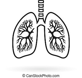 Human lungs anatomy line icon
