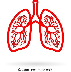 Human lungs line icon isolated on white background