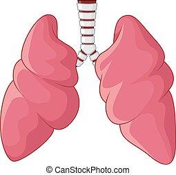 Human Lungs respiratory cartoon