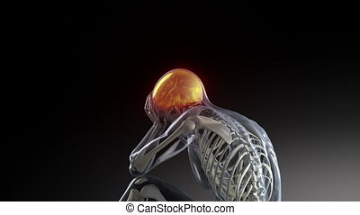 Human male having headache