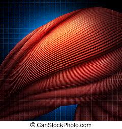 Human Muscle Pain - Human muscle pain or myalgia illness as...