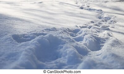 human nature footprints in the snow winter landscape path a...