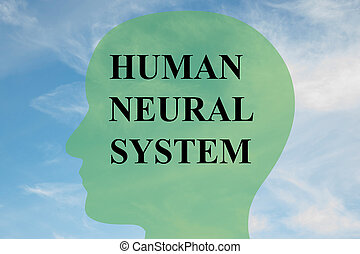 Human Neural System concept