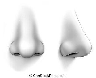 human nose isolates on white background  3d illustration