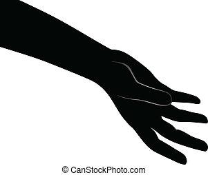 Human open palm