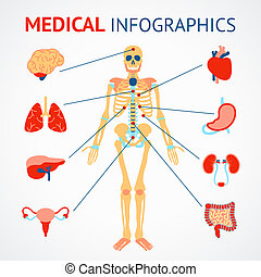 Human organs infographic - Medical infographic set of human...