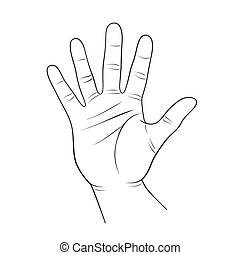 human palm outline
