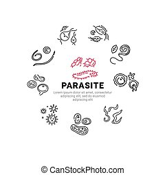Human parasites. Set of vector linear icons.