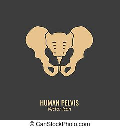 Human Pelvis Icon - Human male anatomy icon. Pelvis image in...