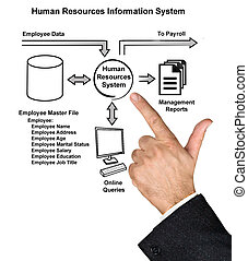 Human Resources Information System