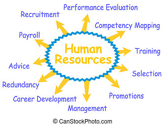 Some possible topics about Human Resources