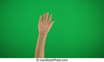 Human right palm raised up and move to right and left on green screen Alpha channel, keyed green screen 4k
