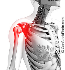 Human shoulder pain artwork