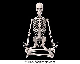 human skeleton - 3d rendered illustration of a sitting...