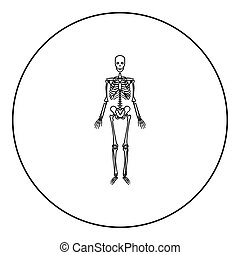 Human skeleton icon black color in round circle