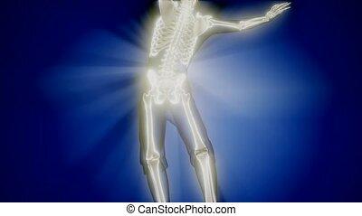 human skeleton radiography medical scan