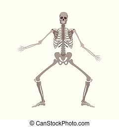 Human skeleton standing with legs bent and arms apart cartoon flat style