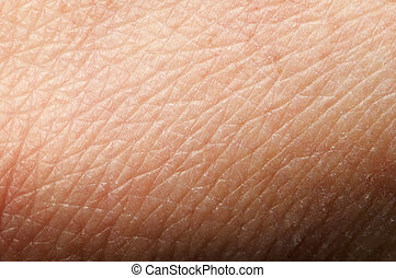 Human skin close up. Structure of Skin