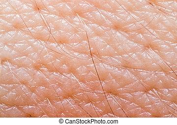 Macro of human skin on the hand wrist