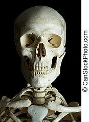 Human Skull - A human skull on black background