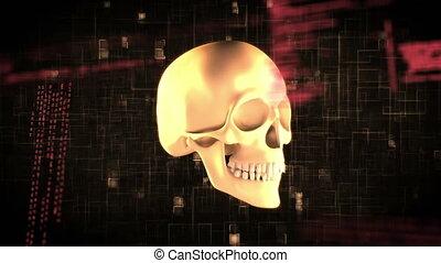 Human skull and program codes - Digitally generated ...