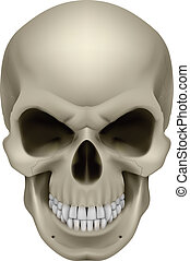 Human Skull - Freaky Human Skull. The emotion of anger....