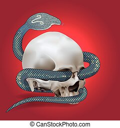 Human skull entwined by snake