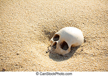 human skull half buried in the beach sand - human skull half...