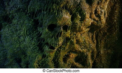 Human Skull In Slimy Cave Wall - Old human skull lodged in ...